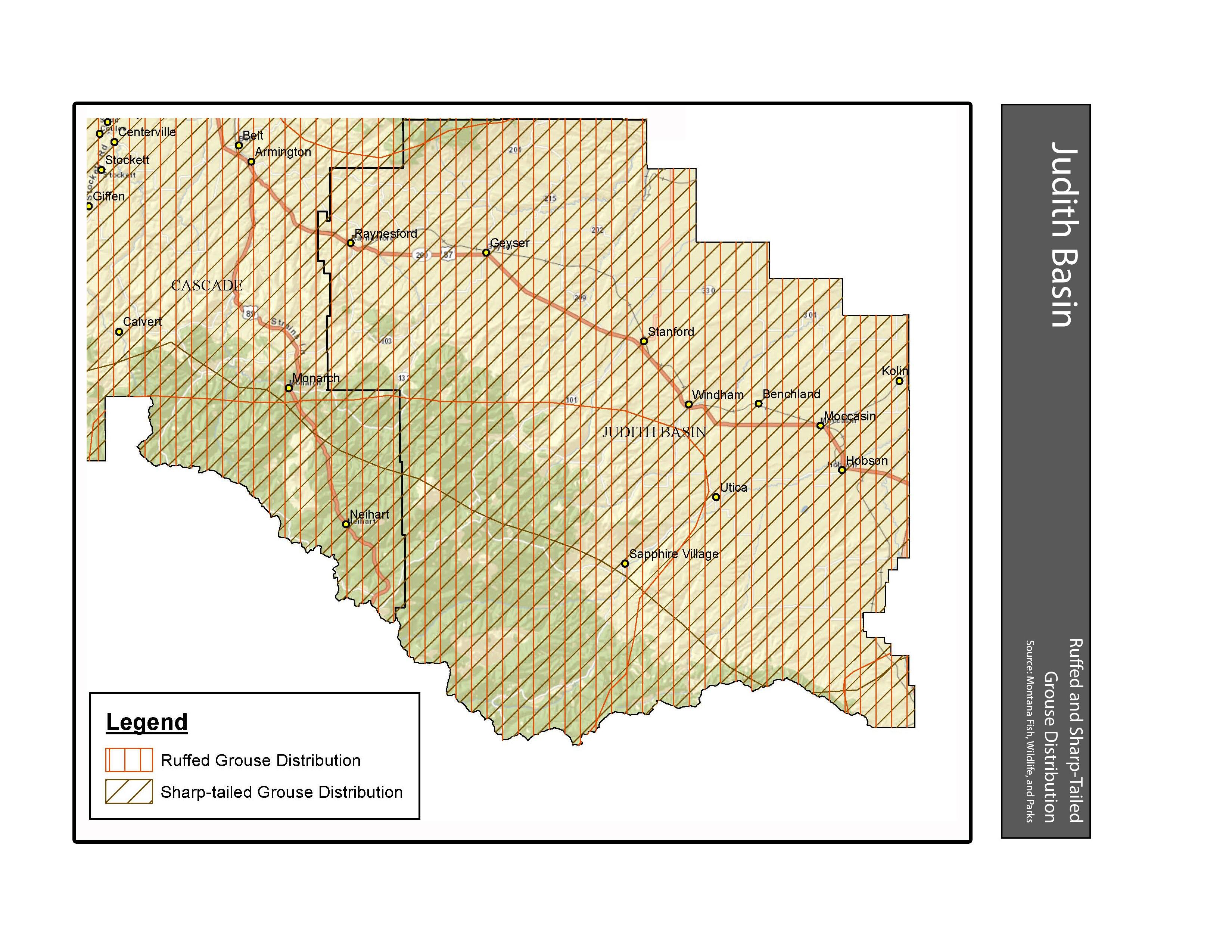 Ruffed and Sharp-tailed Grouse Distribution Judith Basin County