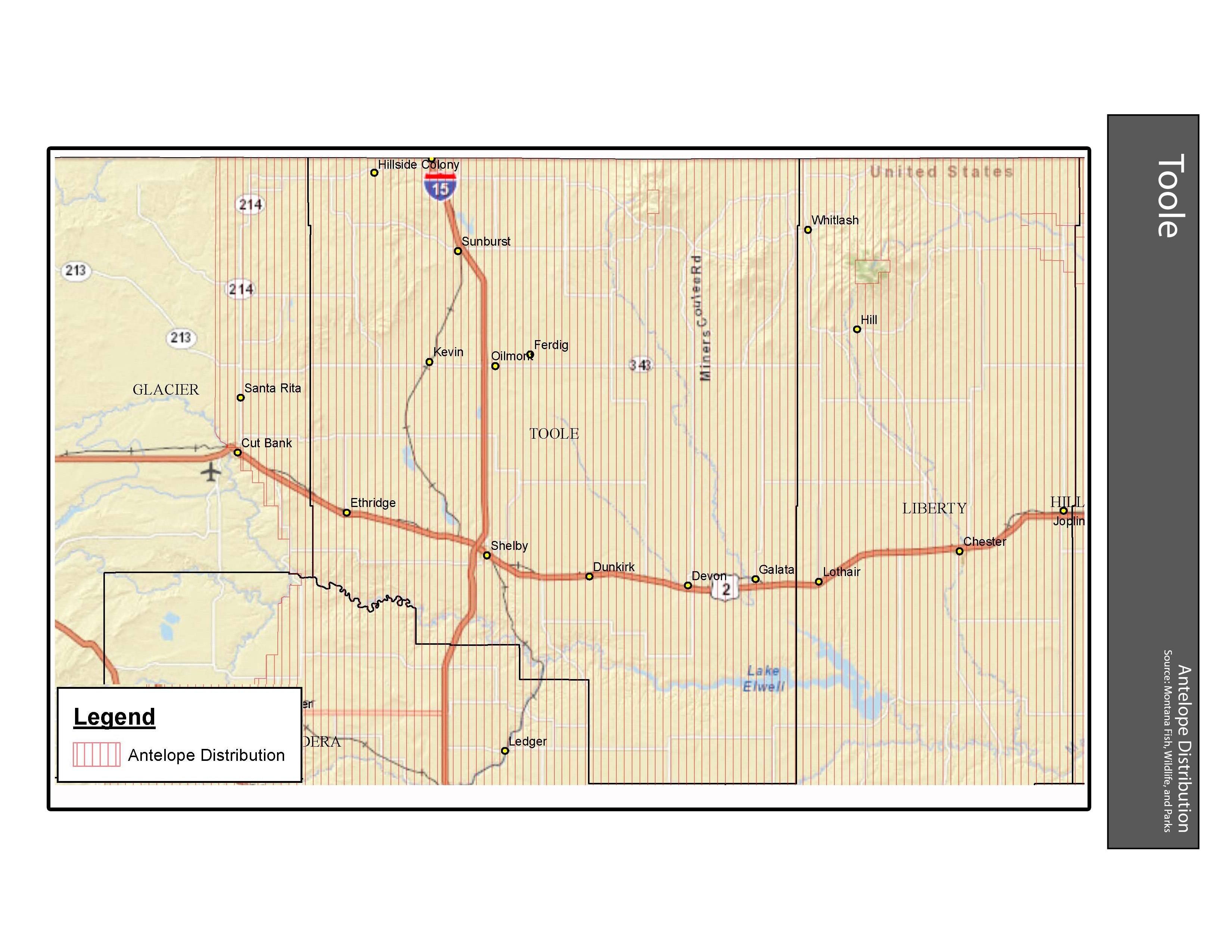 Antelope Distribution Toole County
