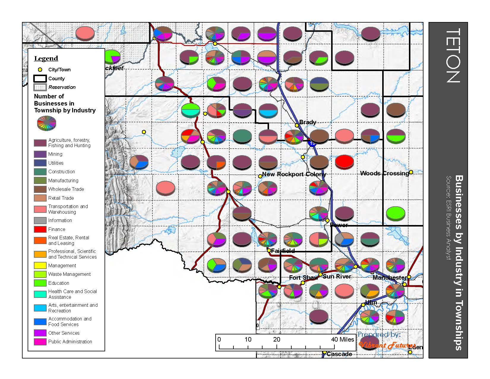 Businesses by Industry in Townships Teton County